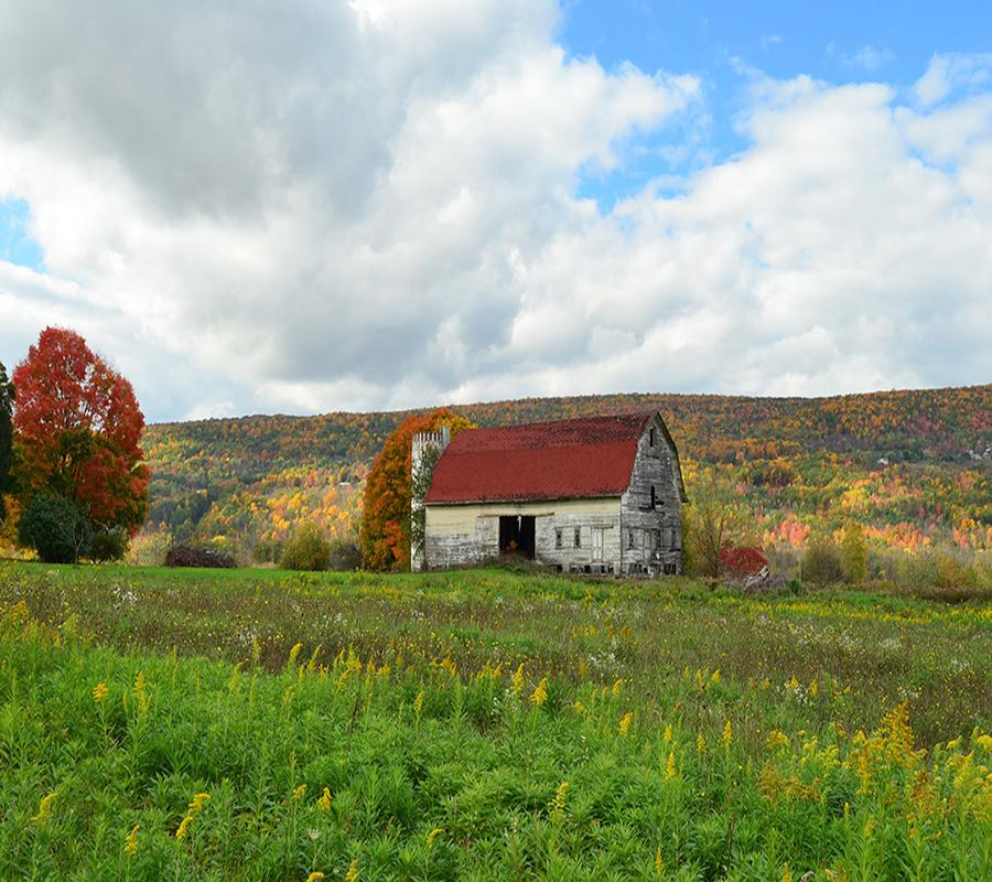 A barn house on an empty Field