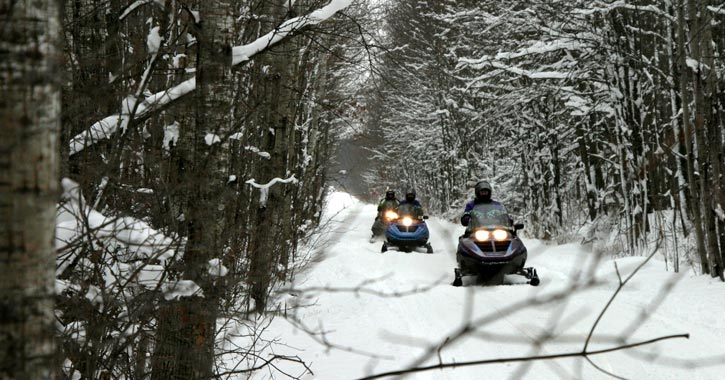 line of snowmobilers going down a trail
