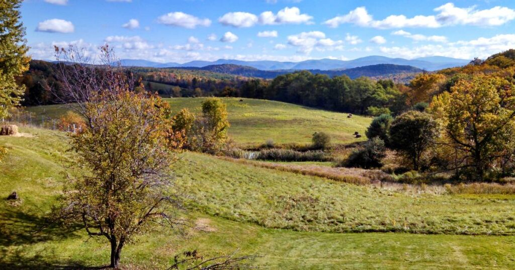 A view of some farm land hills with some trees changing colors from green to oranges and mountains in the background.